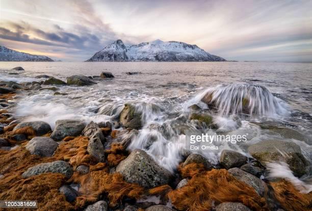 paisaje marino de la isla de sessoya desde kvaloya, tromso, noruega - noruega fotografías e imágenes de stock