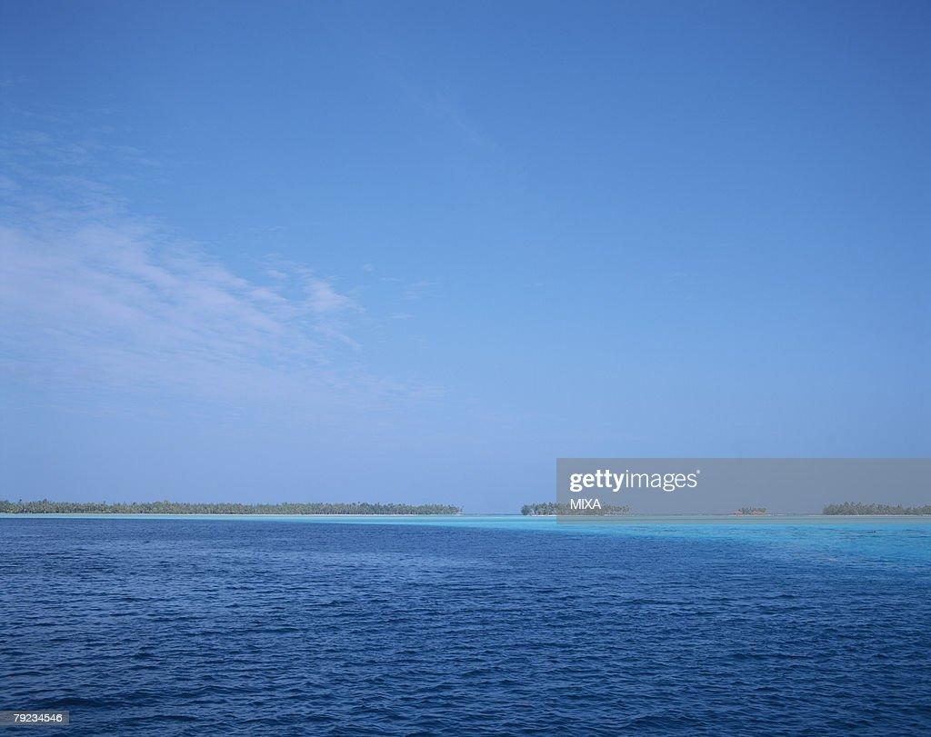 Seascape on a sunny day in Tahiti : Stock Photo