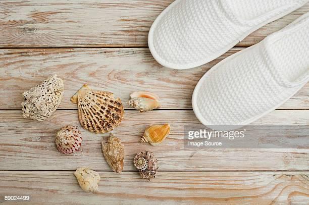 Seashells and slippers