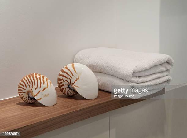 Seashells and towels on shelf