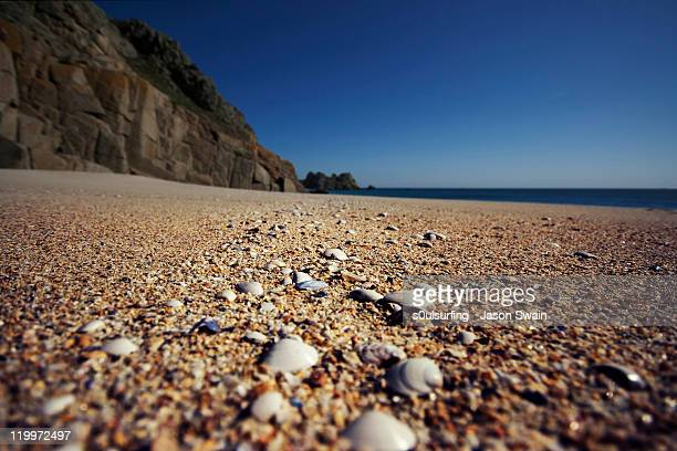 seashells by seashore - s0ulsurfing stock pictures, royalty-free photos & images