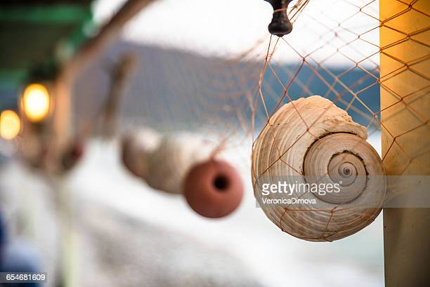 seashells hanging in a fishing net, thassos, greece - thasos stock photos and pictures