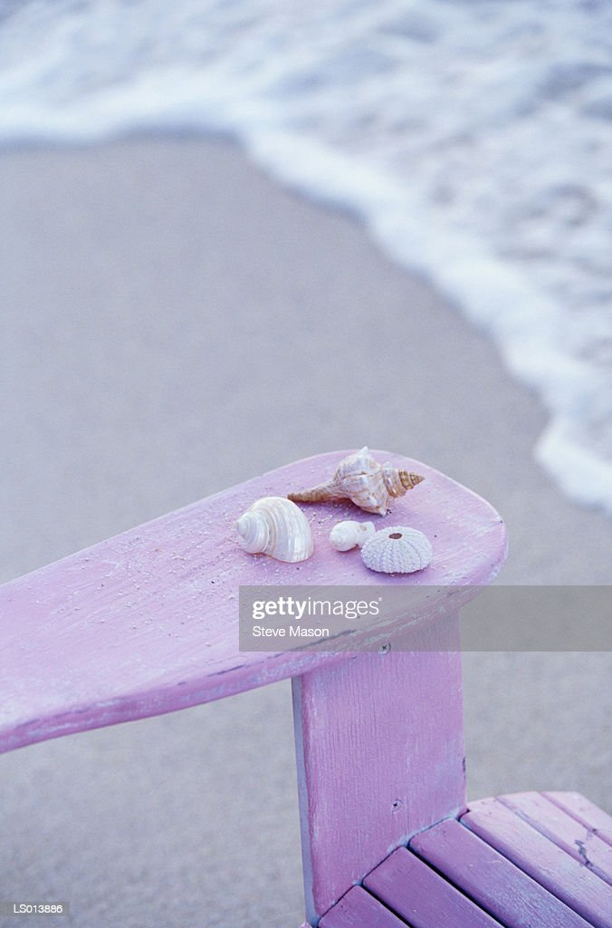 Seashells on the Arm of an Adirondack Chair : Stock Photo