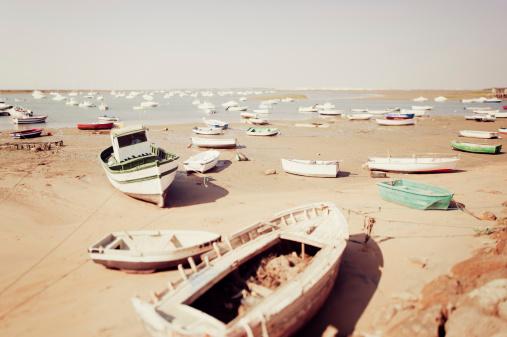 Seashore during low tide 184864945