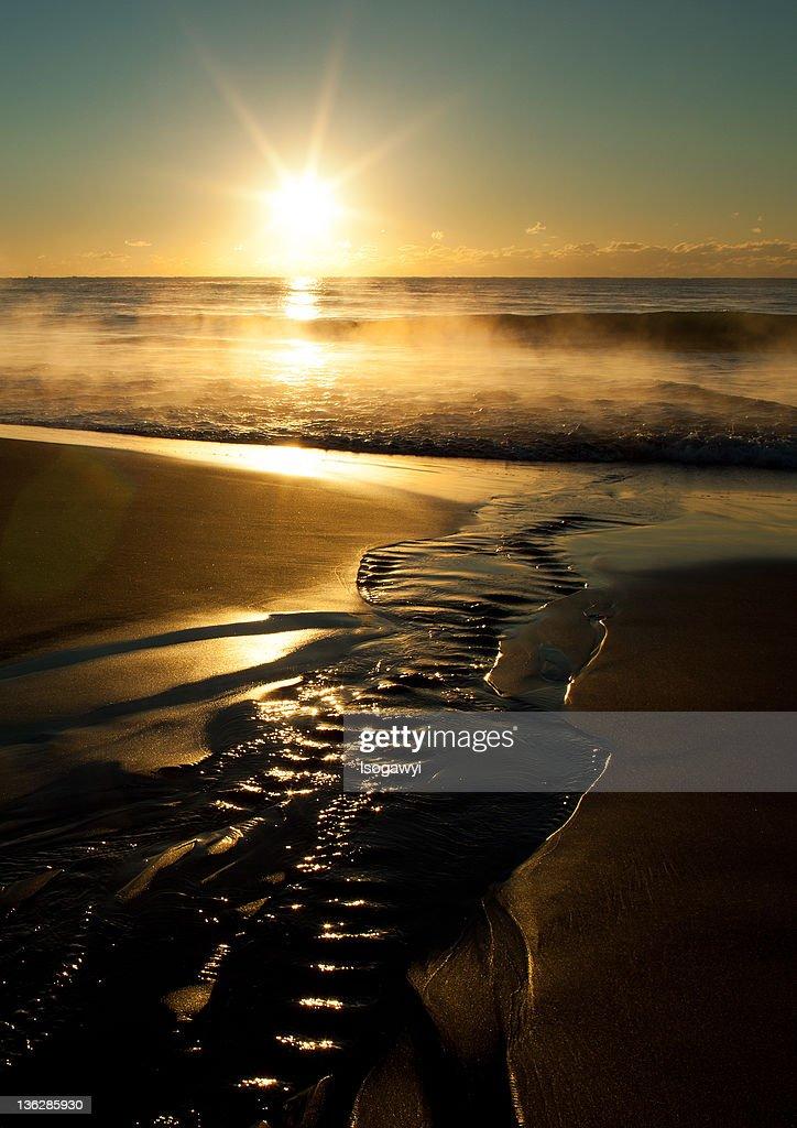 Seashore with rising sun : ストックフォト