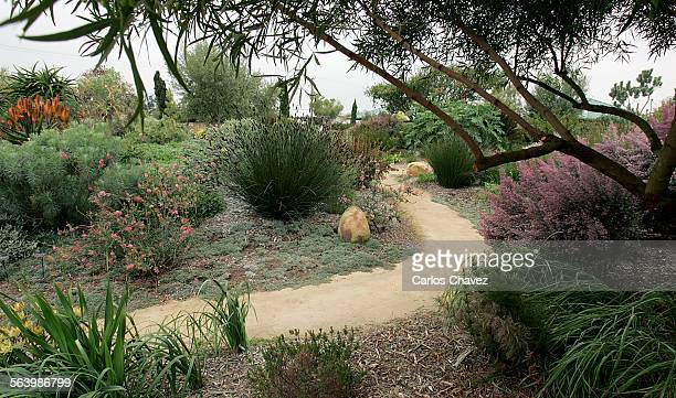 Seaside Gardens In Carpinteria Boasts A Few Exotic One Being Of The Theme From