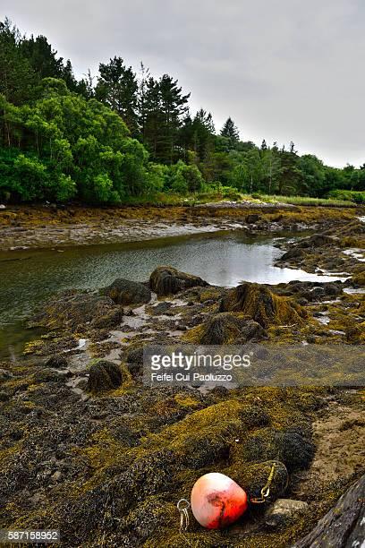 Seaside of Glengarriff in Cork County, Ireland