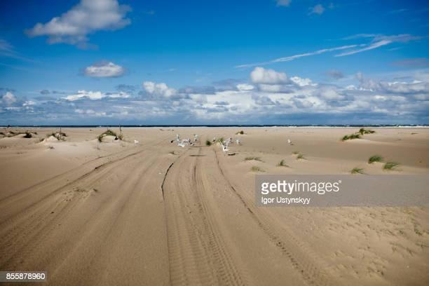 Seaside on Texel, Netherlands