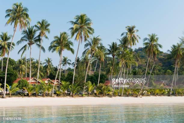 seaside resort at bang bao beach on ko kut island - golf von thailand stock-fotos und bilder