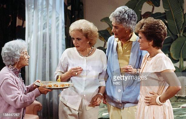 Estelle Getty as Sophia Petrillo Betty White as Rose Nylund Bea Arthur as Dorothy Petrillo Zbornak Rue McClanahan as Blanche Devereaux