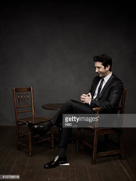 2016 Pictured David Schwimmer
