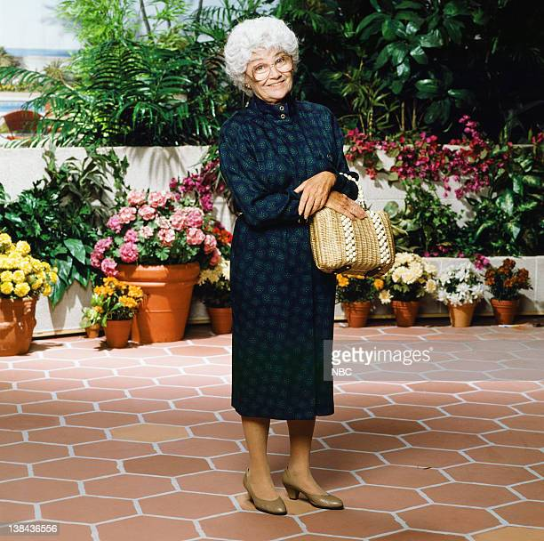 Estelle Getty as Sophia Petrillo