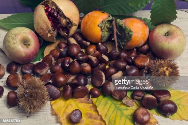 Season fruits