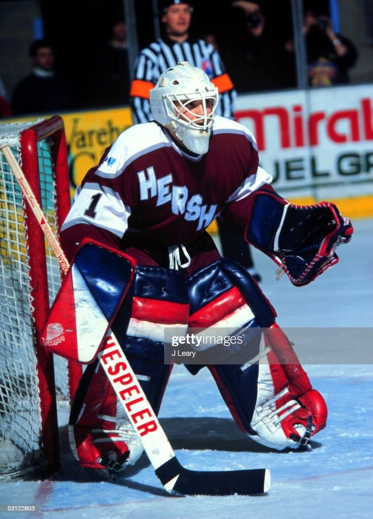 season-hershey-goaltender-tim-cheveldae-