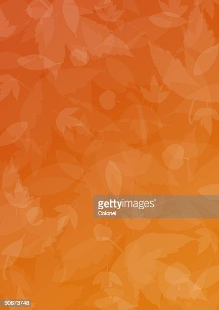 seasonal 1 (fall / autumn) - autumn falls stock pictures, royalty-free photos & images