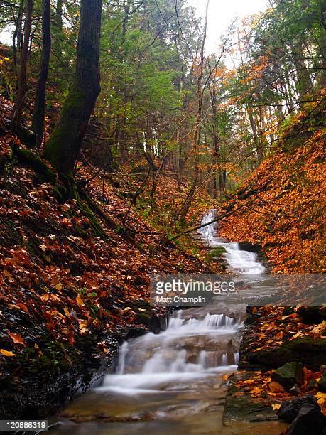 seasonal autumn waterfall - スカネアトレス湖 ストックフォトと画像
