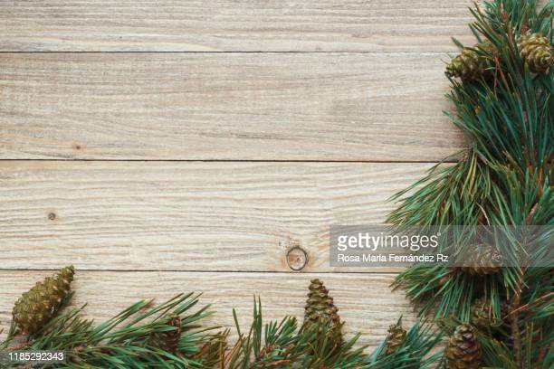 seasonal rustic christmas border composed of pine branches and pine cone over a rustic wooden background with copy space, overhead view - pinaceae stock pictures, royalty-free photos & images