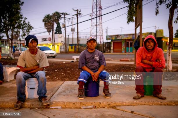 seasonal farm workers in baja california mexico - migrant worker stock pictures, royalty-free photos & images