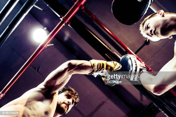 Seasoned Boxers Fighting Seen From Below