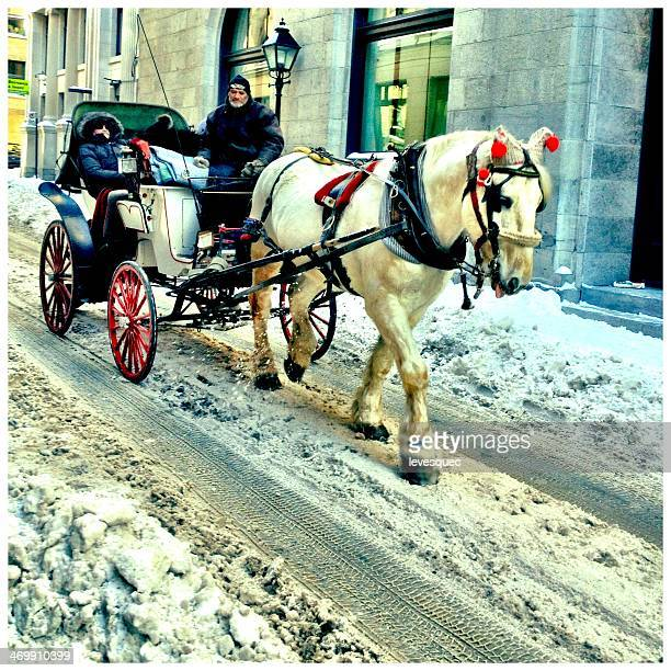 season's greetings - carriage stock pictures, royalty-free photos & images