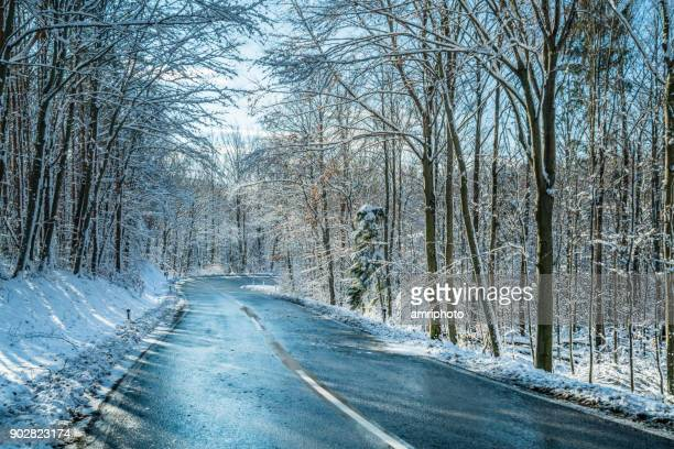 4 Seasons - icy country road in forest on cold winter day