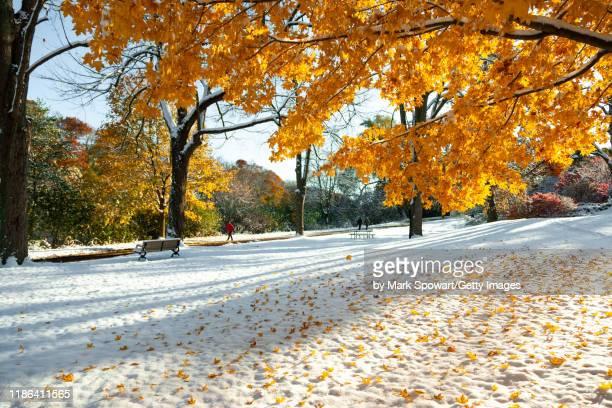 seasons - winter - オンタリオ州 ロンドン ストックフォトと画像