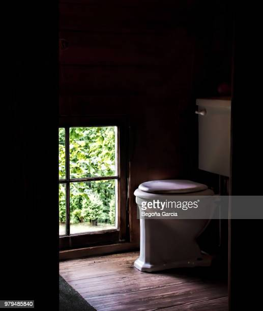 seat with a view - toilet bowl stock photos and pictures