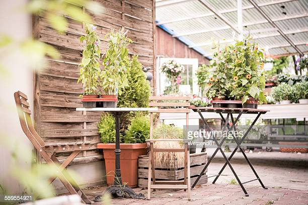 Seating area in a plant nursery