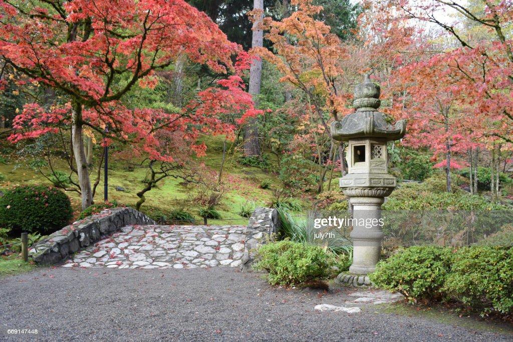 Seattle Japanese Garden : Stock Photo