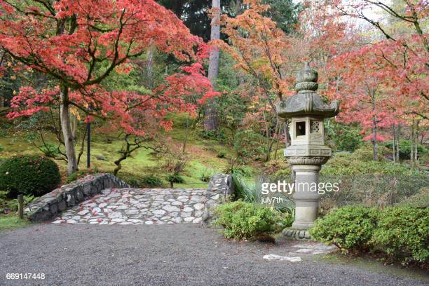 seattle japanese garden - japanese garden stock photos and pictures