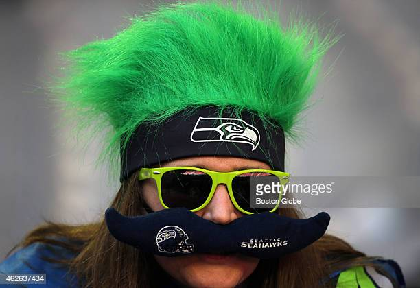 Seattle Seahawks fan shows her colors as she watches pregame warmups The New England Patriots took on the Seattle Seahawks in Super Bowl XLIX at...