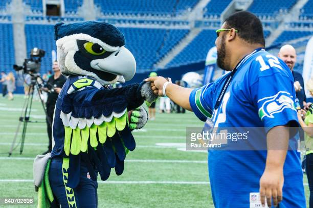 Seattle Seahawks mascot Blitz fistbumps a guest during the American Express Dinner on the 50 at CenturyLink Field on August 29 2017 in Seattle...