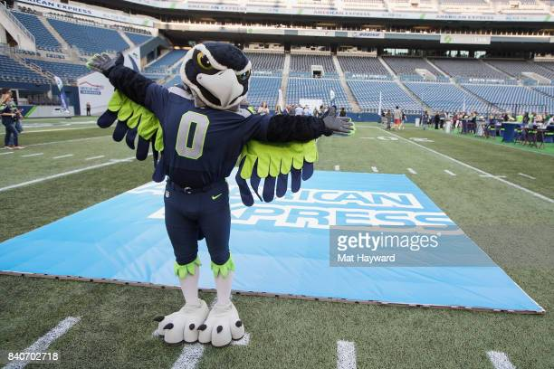 Seattle Seahawks mascot Blitz greets hundreds of fans and Seattle business owners during American Express 'Dinner on the 50' at CenturyLink Field on...