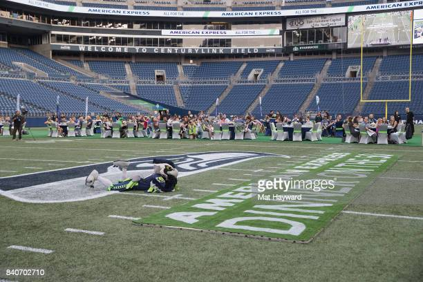 Seattle Seahawks mascot Blitz lays on the field as hundreds of fans and Seattle business owners attend American Express 'Dinner on the 50' at...