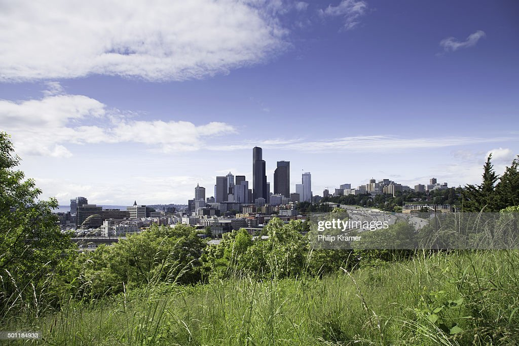 Seattle Skyline and Greenbelt : Stock Photo