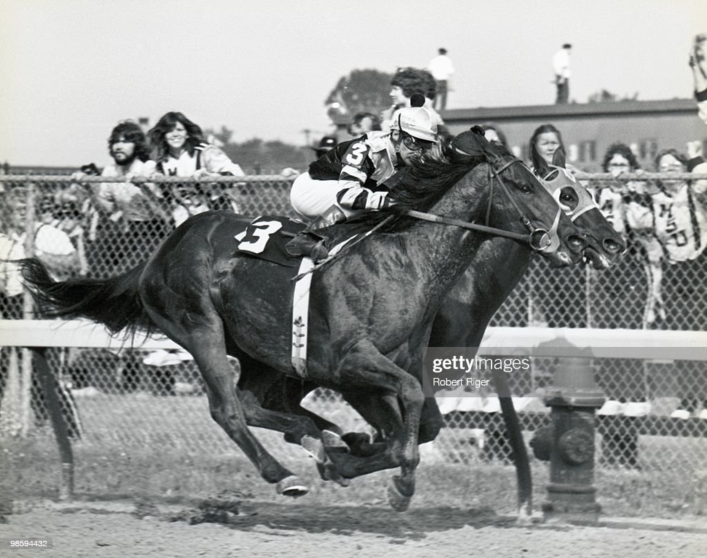 1977 Kentucky Derby : News Photo