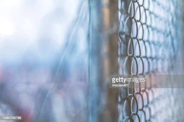 USA, Seattle, Wire mesh fence and bokeh