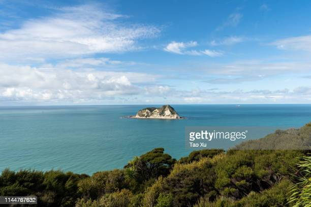 seaview from the east cape lighthouse - gisborne stock photos and pictures