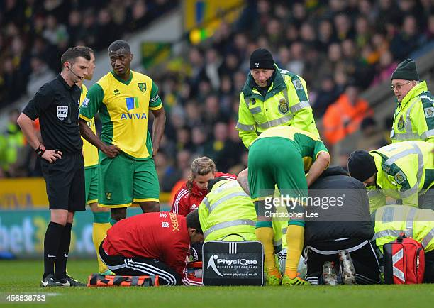 Seb Bassong of Norwich talks to referee Michael Oliver as Nathan Dyer of Swansea receives treatment on the pitch during the Barclays Premier League...