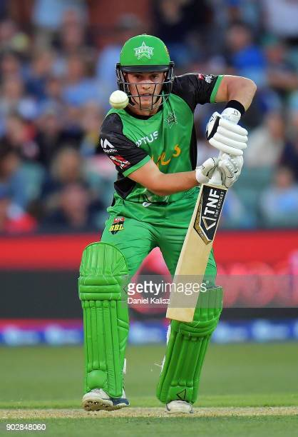 Seb Gotch of the Melbourne Stars bats during the Big Bash League match between the Adelaide Strikers and the Melbourne Stars at Adelaide Oval on...