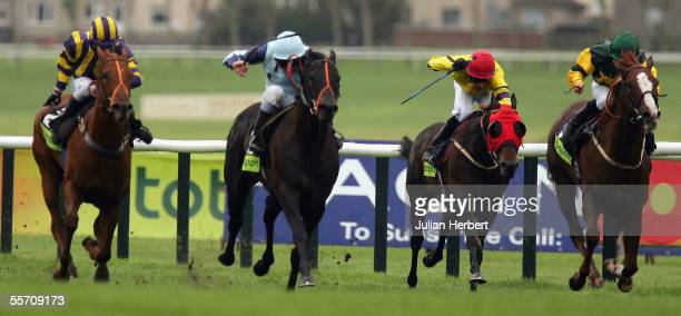 Seb Sanders and Presto Shinko land The totesport Ayr Gold Cup Race run at Ayr Racecourse on September 16 2005 in Ayr Scotland