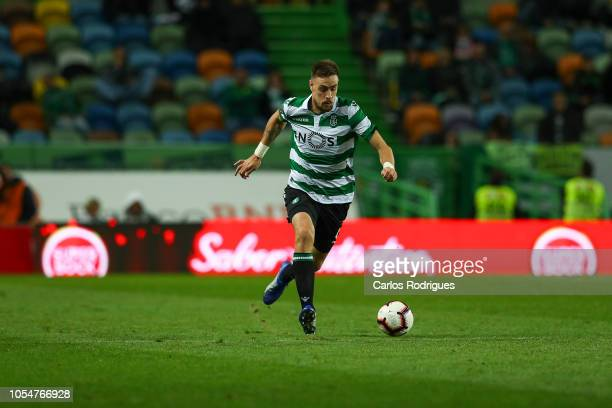 Sebastian Coates of Sporting CP during the Liga NOS round 8 match between Sporting CP and Boavista FC at Estadio Jose Alvalade on October 28 2018 in...