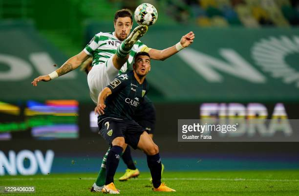 Sebastian Coates of Sporting CP with Salvador Agra of CD Tondela in action during the Liga NOS match between Sporting CP and CD Tondela at Estadio...