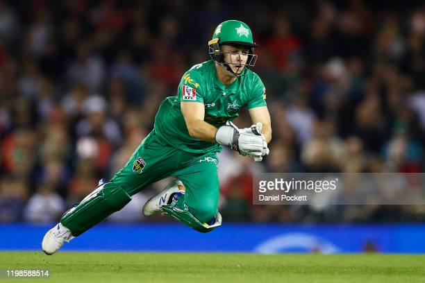 Sebastian Gotch of the Stars catches out Beau Webster of the Renegades during the Big Bash League match between the Melbourne Renegades and the...