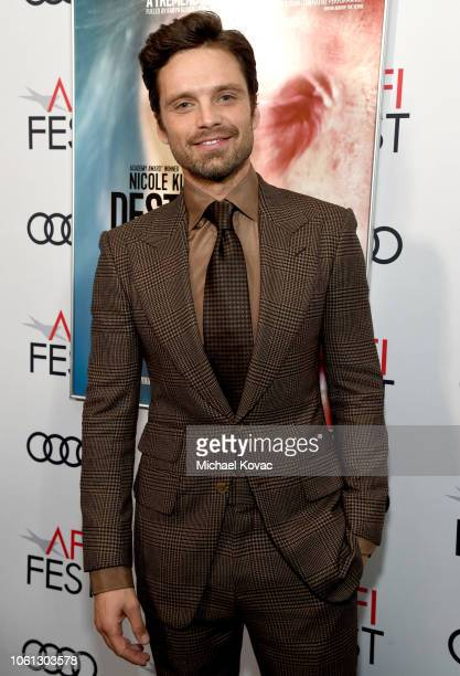 Sebastian Stan attends the gala screening of 'Destroyer' during AFI FEST 2018 at TCL Chinese Theatre on November 5 2018 in Los Angeles California