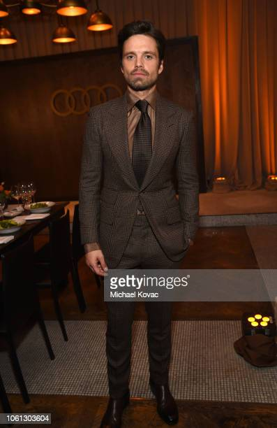 Sebastian Stan attends the gala screening of Destroyer during AFI FEST 2018 at TCL Chinese Theatre on November 5 2018 in Los Angeles California