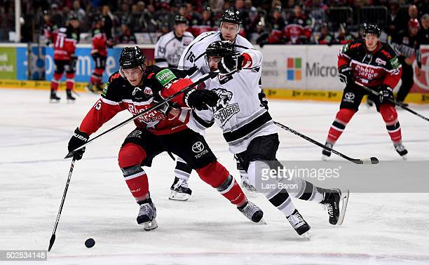 Sebastian Uvira of Koeln is challenged by Kyle Klubertanz of Nuernberg during the DEL match between Koelner Haie and Thomas Sabo Ice Tigers at...
