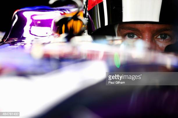 Sebastian Vettel of Germany and Infiniti Red Bull Racing prepares to drive during Practice ahead of the F1 Grand Prix of Italy at Autodromo di Monza...