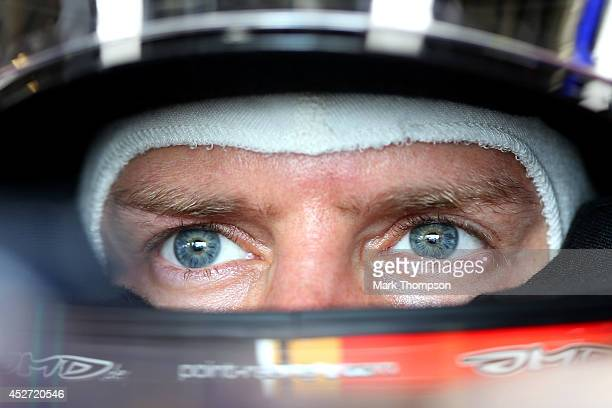 Sebastian Vettel of Germany and Infiniti Red Bull Racing sits in his car in the garage during final practice ahead of the Hungarian Formula One Grand...
