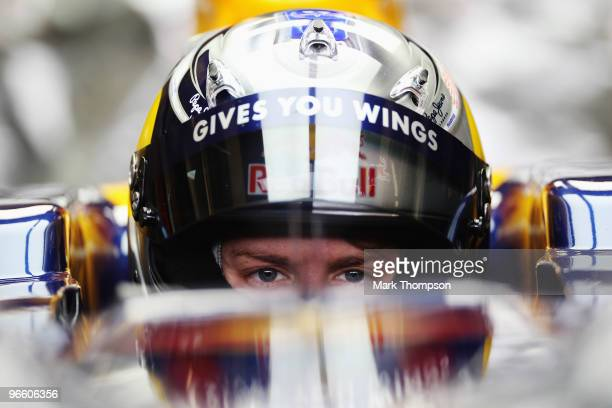 Sebastian Vettel of Germany and Red Bull Racing prepares to drive the new RB6 during winter testing at the Circuito De Jerez on February 12 2010 in...
